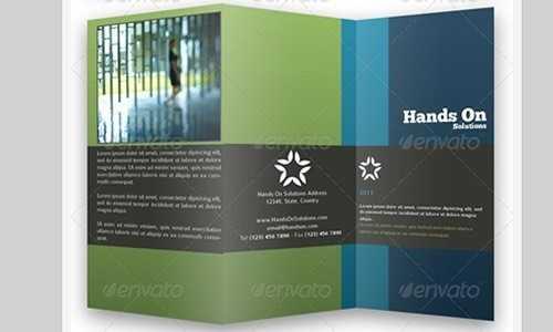 trifold-brochures-bundle